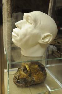 Õsember-kiállítás nyílik a szegedi Móra-múzeumban